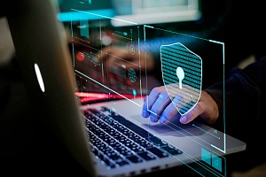cybersecurity practices being utilized by a professional